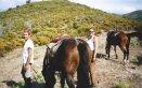 weekend-equestre.8